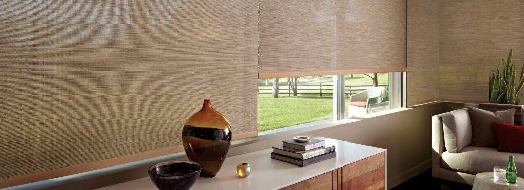 Commercial Motorized Window Shades